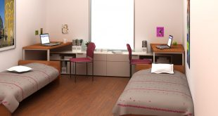 Student Accommodation in Czech